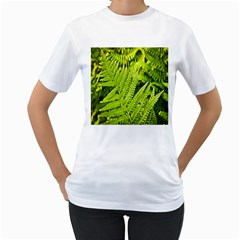 Fern Nature Green Plant Women s T Shirt (white) (two Sided)