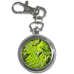 Fern Nature Green Plant Key Chain Watches