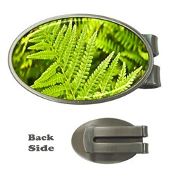 Fern Nature Green Plant Money Clips (Oval)