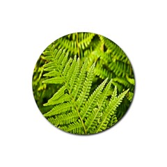 Fern Nature Green Plant Rubber Coaster (Round)