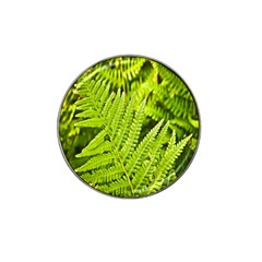 Fern Nature Green Plant Hat Clip Ball Marker (4 pack)