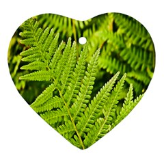Fern Nature Green Plant Heart Ornament (Two Sides)