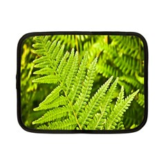 Fern Nature Green Plant Netbook Case (small)