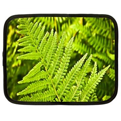 Fern Nature Green Plant Netbook Case (Large)