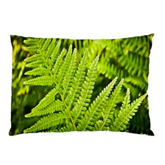 Fern Nature Green Plant Pillow Case