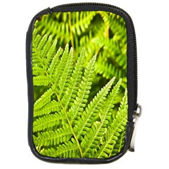 Fern Nature Green Plant Compact Camera Cases