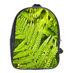 Fern Nature Green Plant School Bags(large)