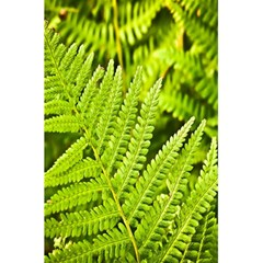 Fern Nature Green Plant 5.5  x 8.5  Notebooks