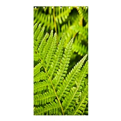 Fern Nature Green Plant Shower Curtain 36  x 72  (Stall)