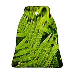 Fern Nature Green Plant Ornament (Bell)