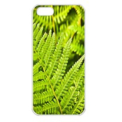 Fern Nature Green Plant Apple iPhone 5 Seamless Case (White)