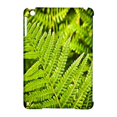 Fern Nature Green Plant Apple Ipad Mini Hardshell Case (compatible With Smart Cover)