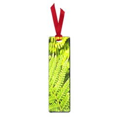 Fern Nature Green Plant Small Book Marks
