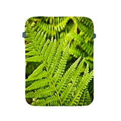 Fern Nature Green Plant Apple Ipad 2/3/4 Protective Soft Cases