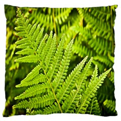 Fern Nature Green Plant Large Flano Cushion Case (One Side)