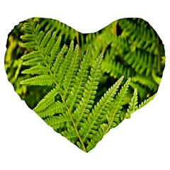 Fern Nature Green Plant Large 19  Premium Flano Heart Shape Cushions