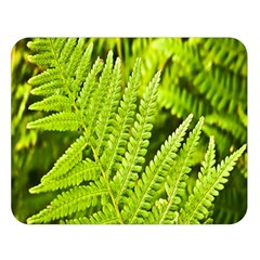 Fern Nature Green Plant Double Sided Flano Blanket (Large)