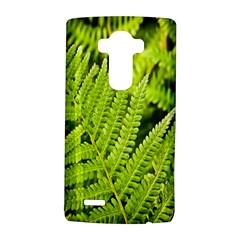 Fern Nature Green Plant LG G4 Hardshell Case