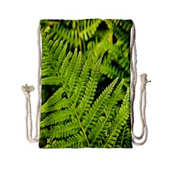 Fern Nature Green Plant Drawstring Bag (Small)