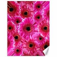 Gerbera Flower Nature Pink Blosso Canvas 18  x 24
