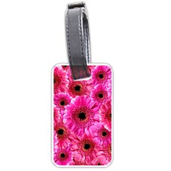 Gerbera Flower Nature Pink Blosso Luggage Tags (two Sides)