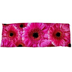 Gerbera Flower Nature Pink Blosso Body Pillow Case Dakimakura (Two Sides)