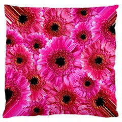 Gerbera Flower Nature Pink Blosso Large Cushion Case (two Sides)