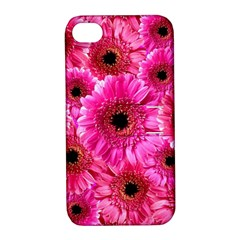Gerbera Flower Nature Pink Blosso Apple Iphone 4/4s Hardshell Case With Stand