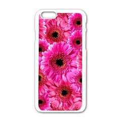 Gerbera Flower Nature Pink Blosso Apple Iphone 6/6s White Enamel Case