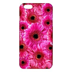 Gerbera Flower Nature Pink Blosso iPhone 6 Plus/6S Plus TPU Case