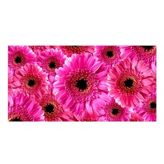 Gerbera Flower Nature Pink Blosso Satin Shawl