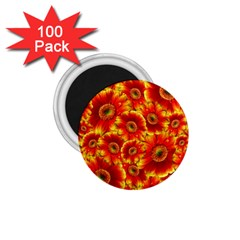 Gerbera Flowers Blossom Bloom 1.75  Magnets (100 pack)