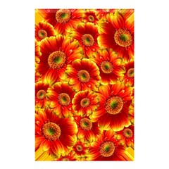 Gerbera Flowers Blossom Bloom Shower Curtain 48  x 72  (Small)