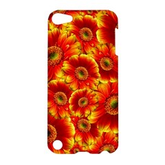 Gerbera Flowers Blossom Bloom Apple iPod Touch 5 Hardshell Case