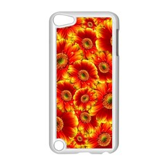 Gerbera Flowers Blossom Bloom Apple iPod Touch 5 Case (White)