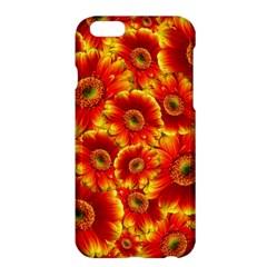 Gerbera Flowers Blossom Bloom Apple Iphone 6 Plus/6s Plus Hardshell Case