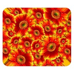 Gerbera Flowers Blossom Bloom Double Sided Flano Blanket (small)
