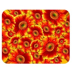 Gerbera Flowers Blossom Bloom Double Sided Flano Blanket (Medium)