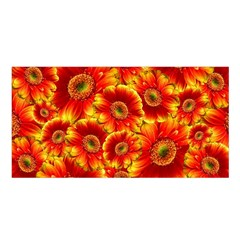 Gerbera Flowers Blossom Bloom Satin Shawl
