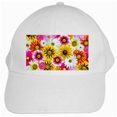 Flowers Blossom Bloom Nature Plant White Cap