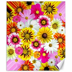 Flowers Blossom Bloom Nature Plant Canvas 20  x 24