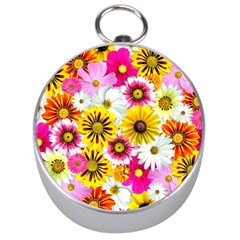 Flowers Blossom Bloom Nature Plant Silver Compasses