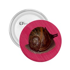 Snail Pink Background 2.25  Buttons