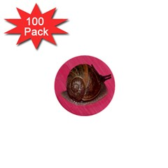 Snail Pink Background 1  Mini Buttons (100 pack)