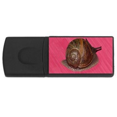 Snail Pink Background USB Flash Drive Rectangular (2 GB)