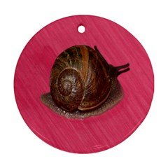 Snail Pink Background Round Ornament (two Sides)