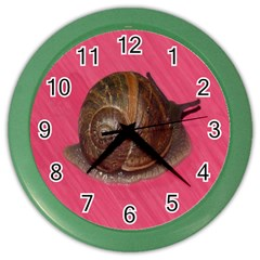 Snail Pink Background Color Wall Clocks