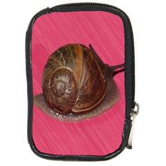Snail Pink Background Compact Camera Cases