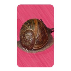 Snail Pink Background Memory Card Reader