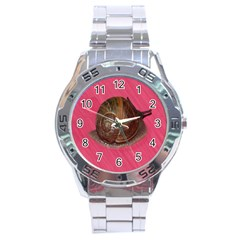 Snail Pink Background Stainless Steel Analogue Watch